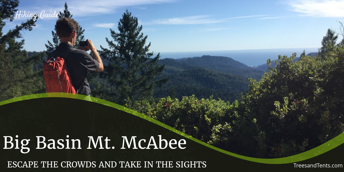The overlook at Mt. McAbee in Big Basin State Park