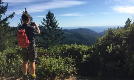 Mt. McAbee Overlook at Big Basin