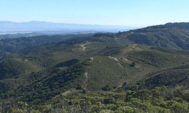 Montara Mountain from San Pedro Valley Park