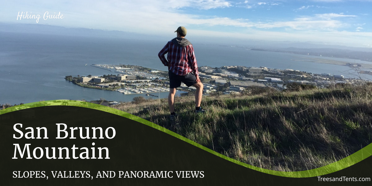 Admiring the view from the top of the ridge at San Bruno Mountain.