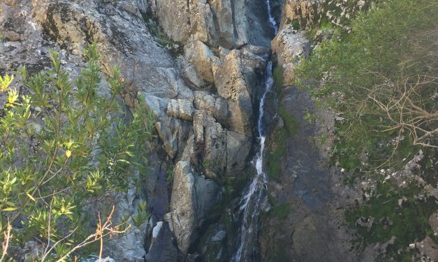 Murietta Falls and the Ohlone Wilderness