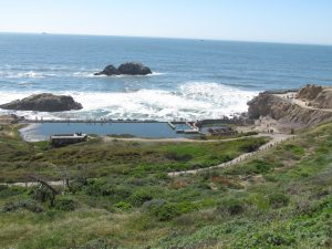 Sutro Baths and Lands End is a great dog-friendly hiking trail in San Francisco