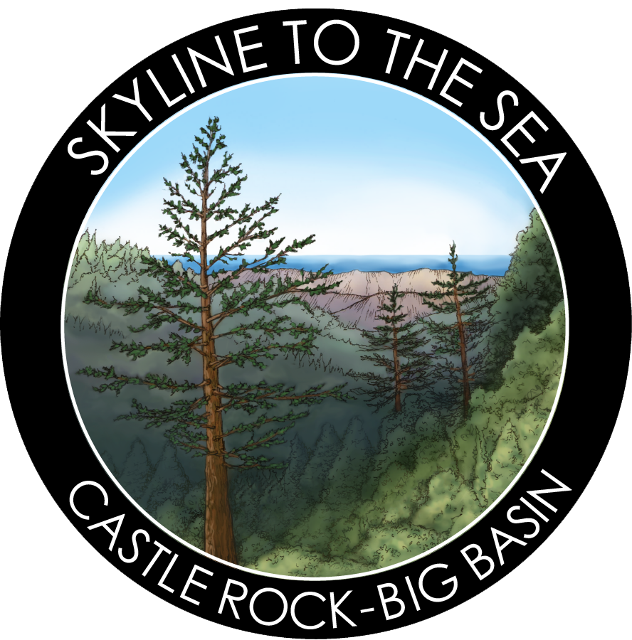Skyline to Sea Sticker