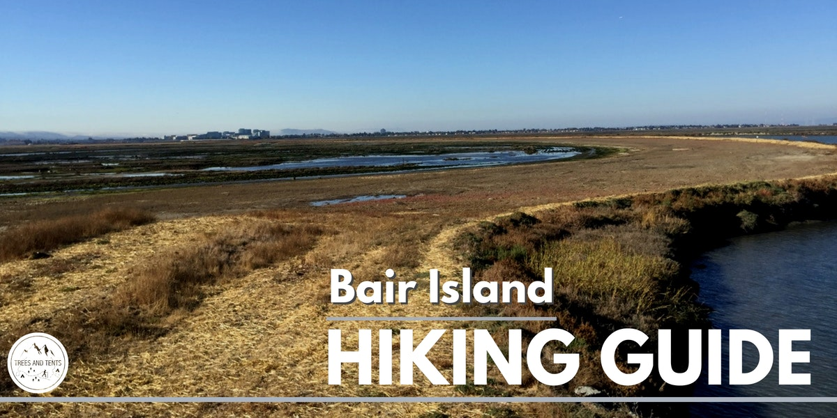 Bair Island in Redwood City has an easy 3.5 mile hiking trail that bird watchers will love.