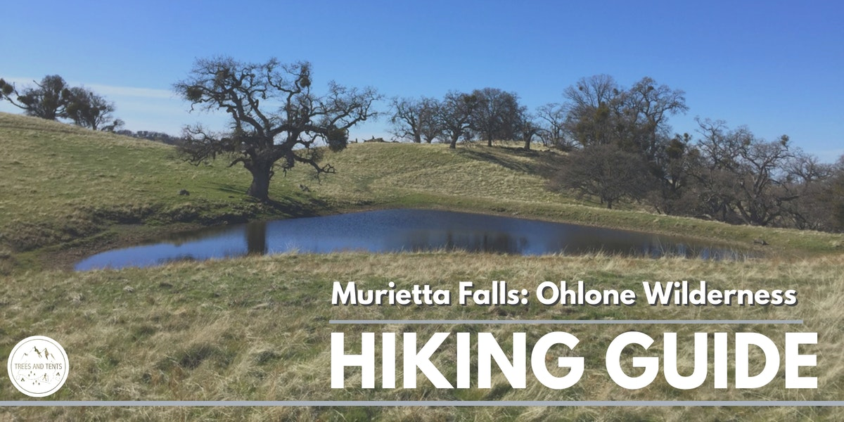 The challenging 12-mile trail to seasonal Murietta Falls in the Ohlone Wilderness has over 4000 feet of elevation gain.
