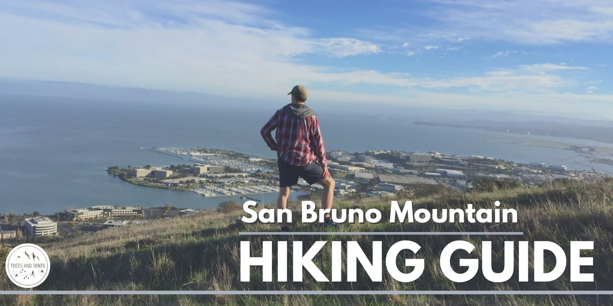 The ridge-to-ridge loop at San Bruno Mountain has stunning views of the San Francisco Bay.
