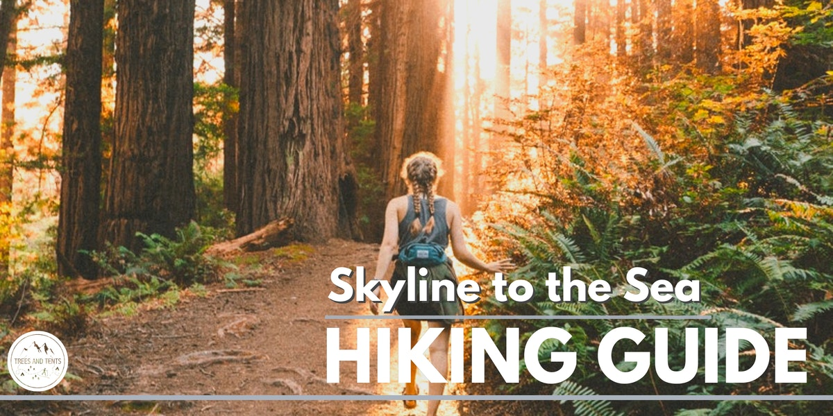 The Skyline-to-the-Sea trail is a 30-mile backpacking trip through Castle Rock State Park and Big Basin Redwoods State Park.