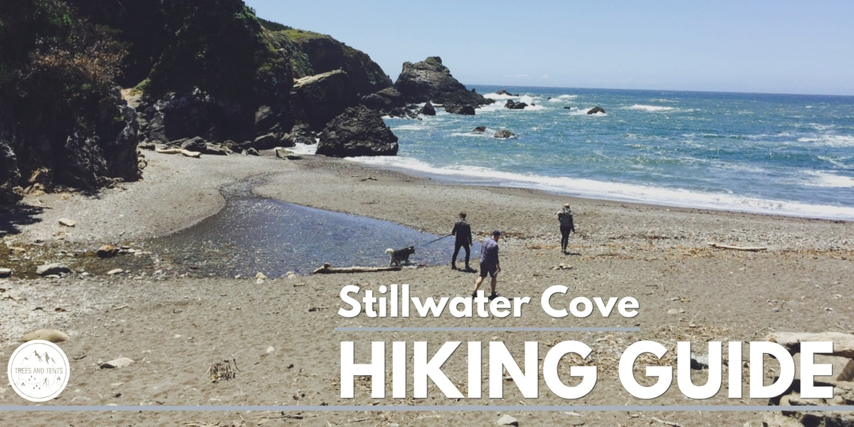 Stillwater Cove is part of Sonoma County Regional Park and has Redwood trees and a sandy cove beach