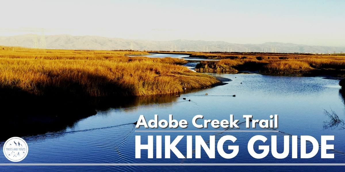Adobe Creek Trail at Palo Alto Baylands