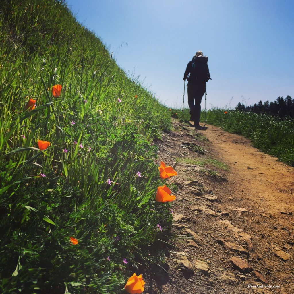 The Bay Area Ridge Trail goes through some of the Bay Area's prettiest parks.