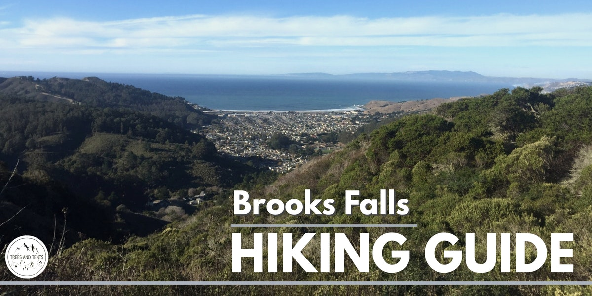 The Brooks Falls loop is a 9-mile hike to Montara Mountain from San Pedro Valley Park.