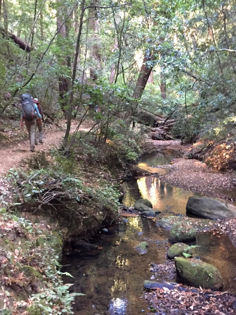 The third day of the Skyline to the Sea trail runs along a creek