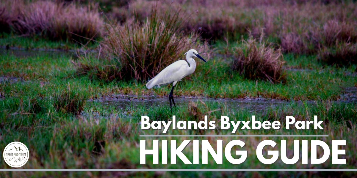 This 2.7 mile hike follows the marshy shoreline before winding through the hills of Palo Alto Baylands Byxbee Park where walkers are treated to sweeping views of the San Francisco Bay.