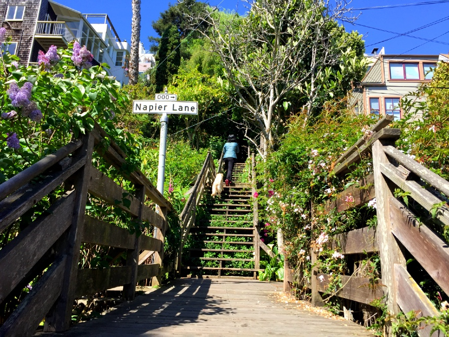The Filbert Street stairs is a long wooden staircase that leads to Coit Tower.