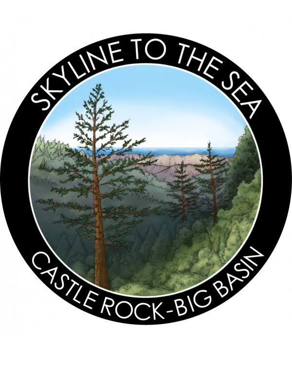 Illustration for Skyline to the Sea Trail Sticker