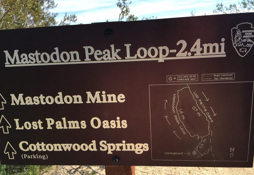 The Mastodon Peak Loop trail sign from Joshua Tree's Cottonwood Campground