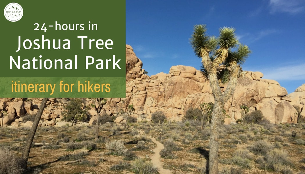 24 hour itinerary for Joshua Tree National Park. Itinerary for hikers