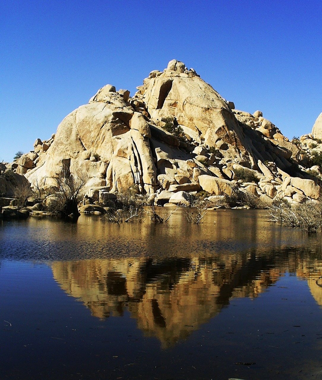 Barker Dam nature trail at Joshua Tree National Park