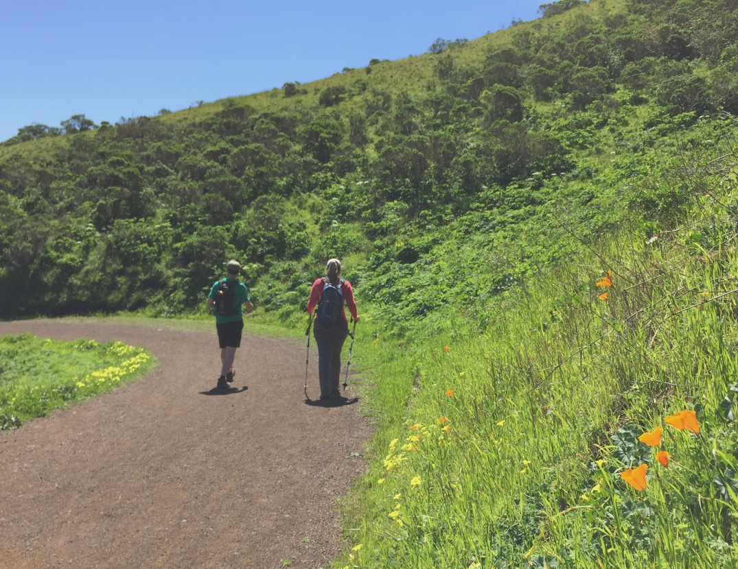 Hikers on the Miwok trail in the Marin headlands