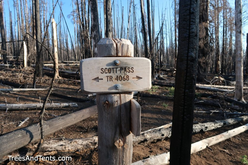 Sign for the Scott Pass Trail in the Pole Creek Burn Zone.