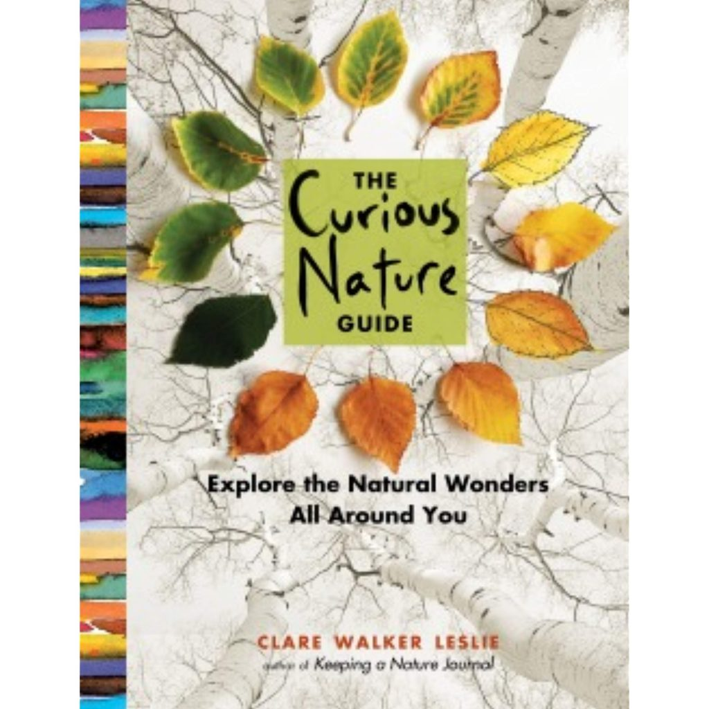 Book cover for The Curious Nature Guide