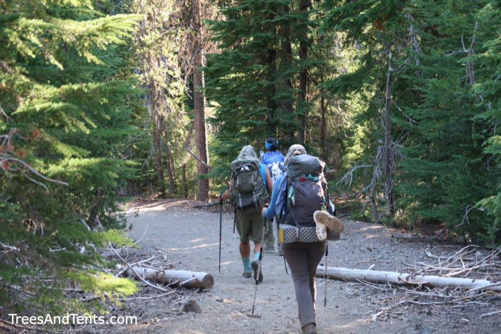 Walking through the pines on the Wickiup Plains Trail in the Three Sisters Wilderness