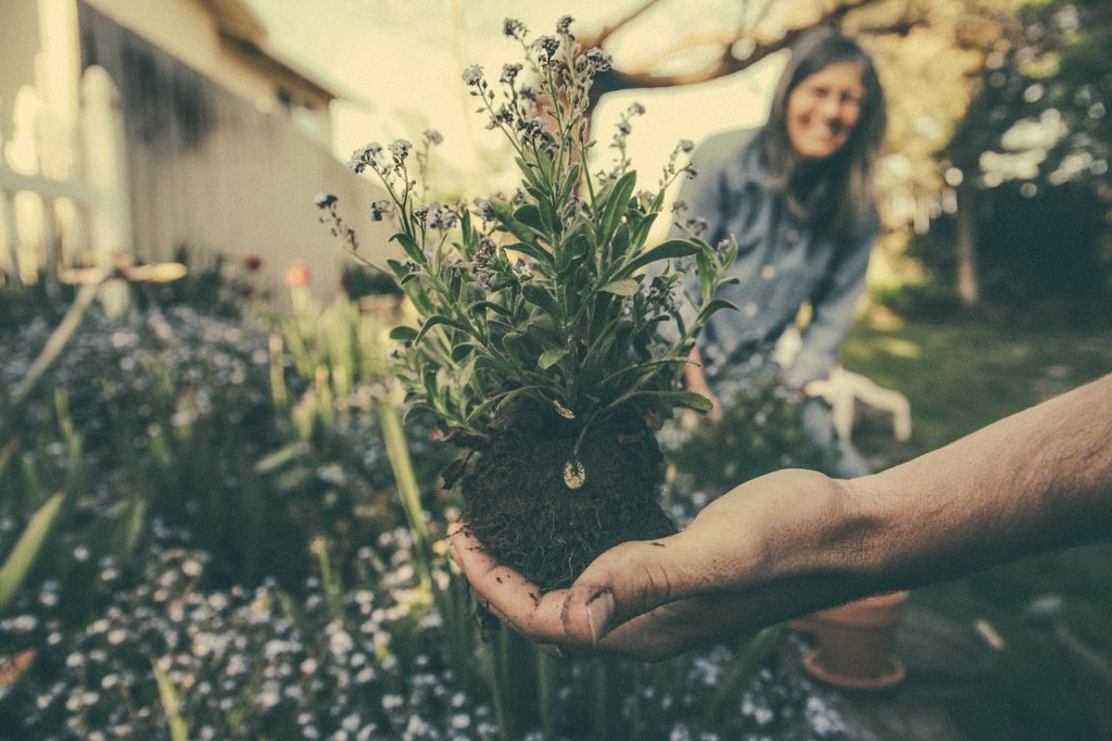 Tending a garden can help you get your nature fix this winter
