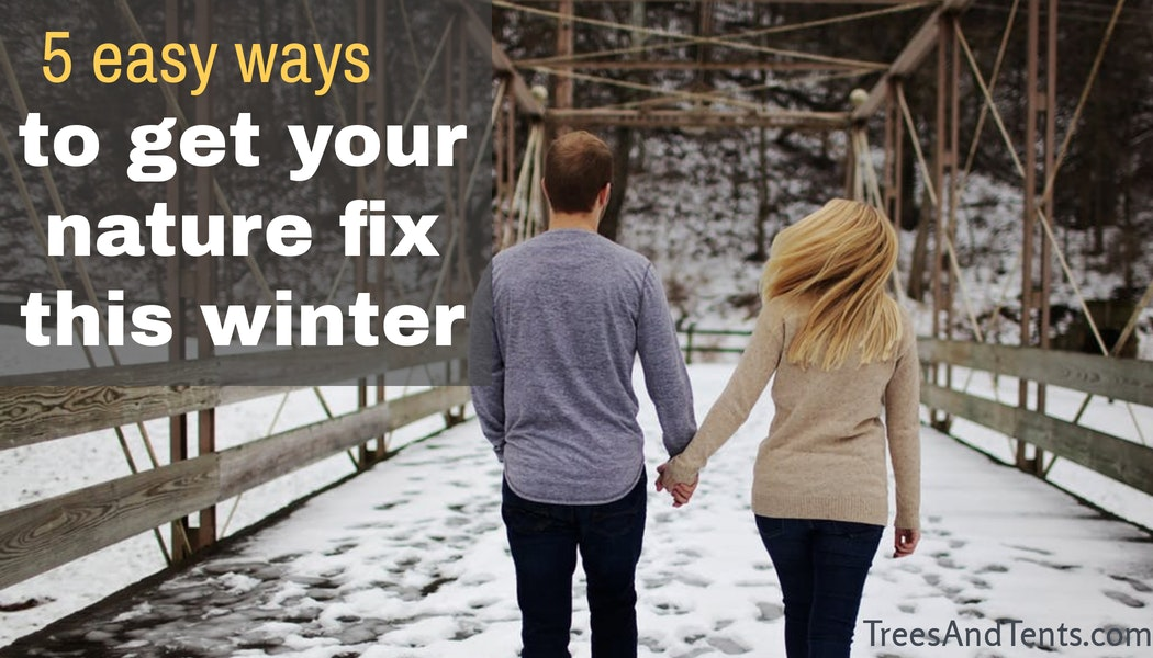 featured image for five easy ways to get your nature fix this winter
