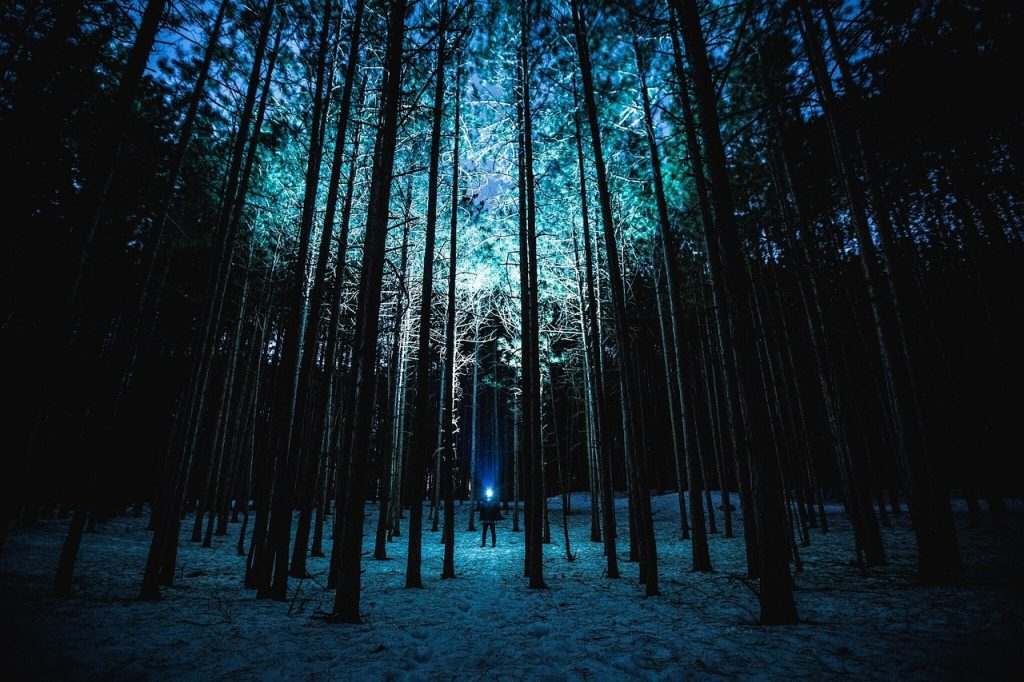 Going for a hike at night can help you get your nature fix this winter