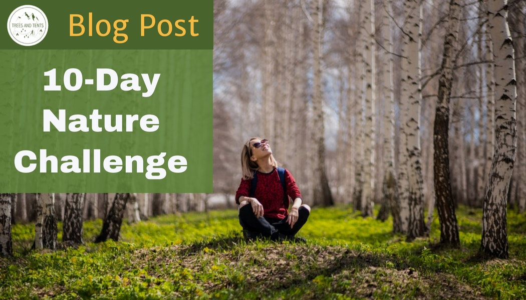 Header for the 10-day nature challenge. Photo of a woman sitting cross-legged in a grove of Aspen trees.