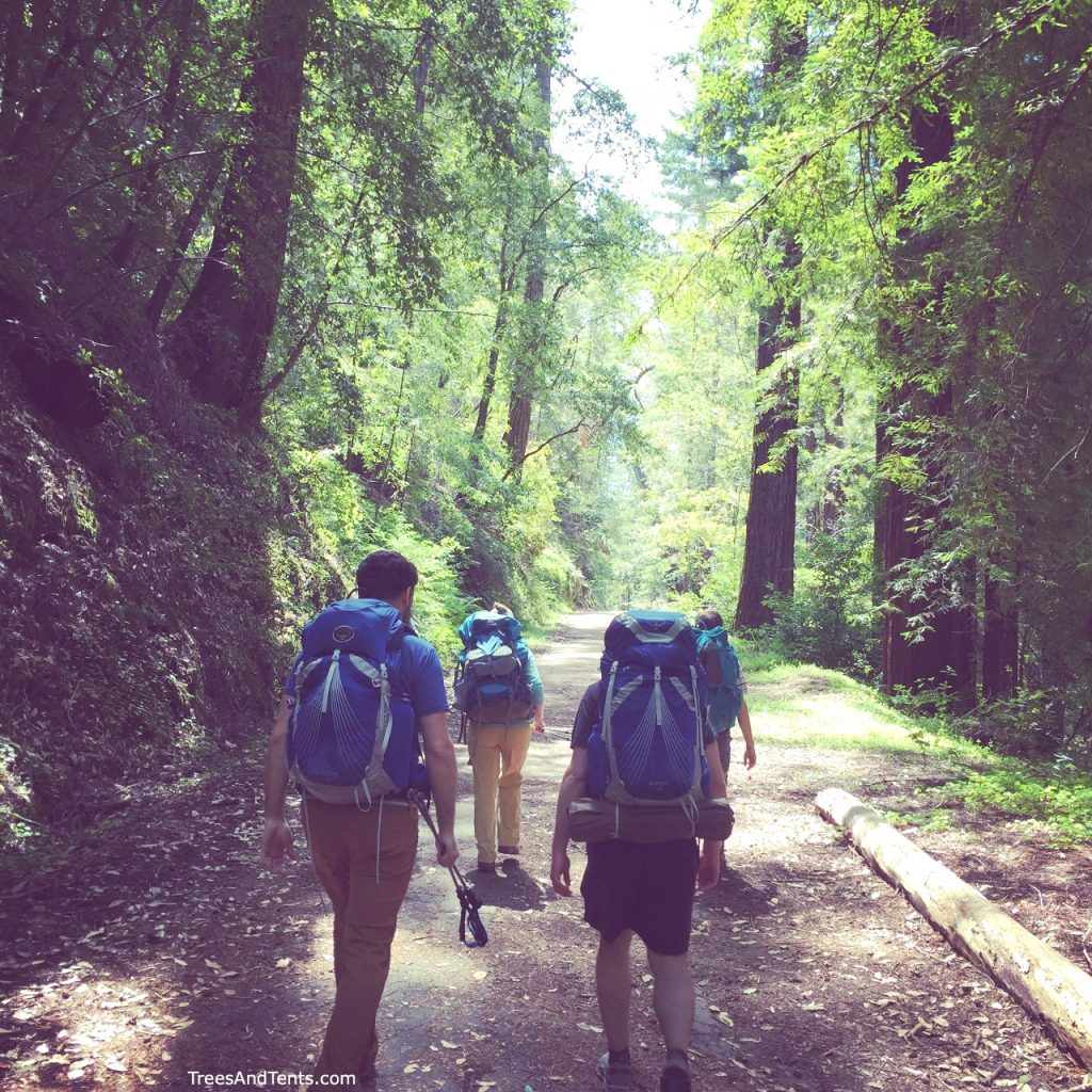 Backpacking in the redwoods at Big Basin State Park